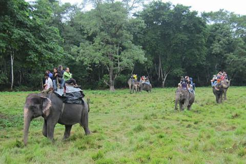 Chitwan National Park Tour-I