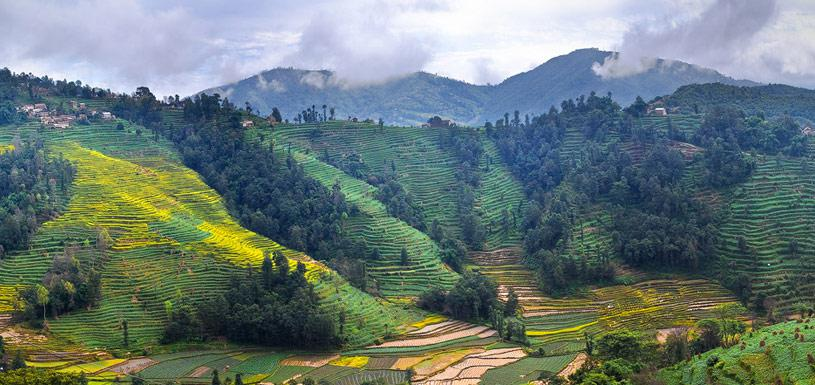 Terraced farmland at Nagarkot